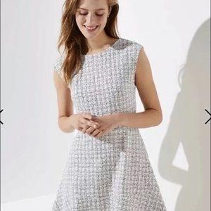 NWOT Ann Taylor Loft Jacquard Dress